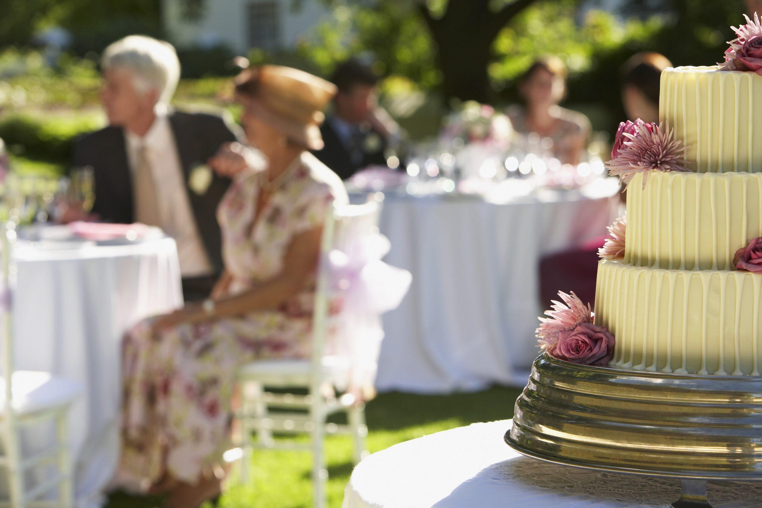 zastawa stołowa na przyjęcia w ogrodzie